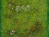 cushion-plant-mt-anne-no-2-76-x-76-cm