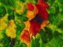 2007 ~ Grapes and Vines ~ Inka Gallery, Hobart
