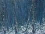 2010 ~ Snow and Ice ~ Goulburn Street Gallery, Hobart